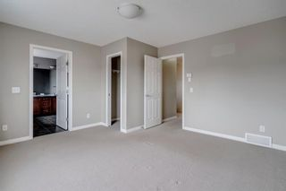 Photo 24: 1571 COPPERFIELD Boulevard SE in Calgary: Copperfield Detached for sale : MLS®# A1107569