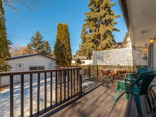Photo 25: 6508 Silver Springs Way NW in Calgary: Silver Springs Detached for sale : MLS®# A1065186
