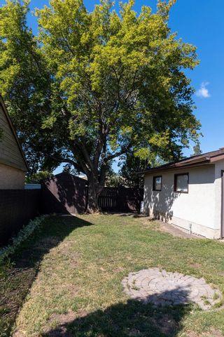 Photo 24: 13812 28 Street in Edmonton: Zone 35 House for sale : MLS®# E4258887