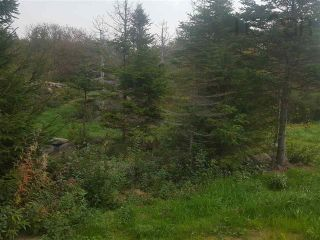 Photo 6: Back Bay Road in Terence Bay: 40-Timberlea, Prospect, St. Margaret`S Bay Vacant Land for sale (Halifax-Dartmouth)  : MLS®# 202121017
