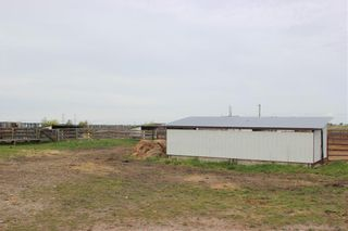 Photo 41: 255122 RANGE ROAD 283 in Rural Rocky View County: Rural Rocky View MD Detached for sale : MLS®# C4299802