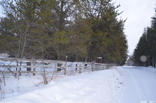Photo 36: Holbein Acreage in Holbein: Residential for sale : MLS®# SK839659
