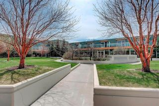 Photo 38: 2805 99 SPRUCE Place SW in Calgary: Spruce Cliff Apartment for sale : MLS®# A1020755
