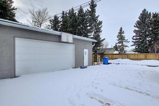 Photo 44: 429 1 Avenue NE: Airdrie Detached for sale : MLS®# A1071965
