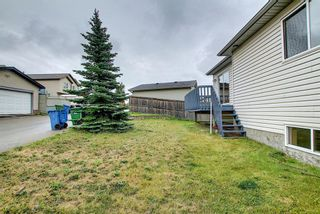 Photo 43: 379 Coventry Road NE in Calgary: Coventry Hills Detached for sale : MLS®# A1148465