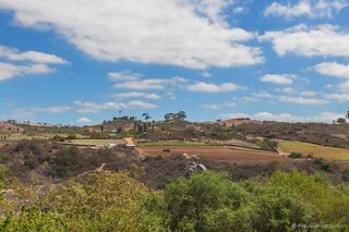 Photo 17: Residential for sale : 3 bedrooms : 5570 COYOTE CRT in CARLSBAD