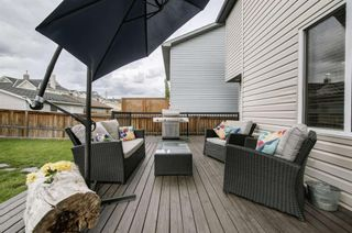 Photo 44: 234 ELGIN View SE in Calgary: McKenzie Towne Detached for sale : MLS®# A1035029