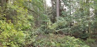 Photo 6: Lot 1 Dorcas Point Rd in : PQ Nanoose Land for sale (Parksville/Qualicum)  : MLS®# 855252