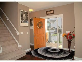 Photo 16: 185 Rainbow Falls Glen: Chestermere House for sale : MLS®# C4017404