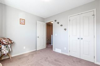 Photo 23: 360 COPPERPOND Boulevard SE in Calgary: Copperfield Detached for sale : MLS®# C4233493