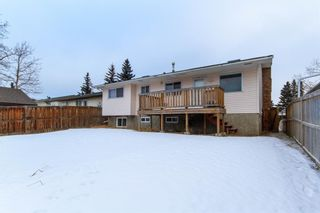 Photo 31: 3807 49 Street NE in Calgary: Whitehorn Detached for sale : MLS®# A1066626