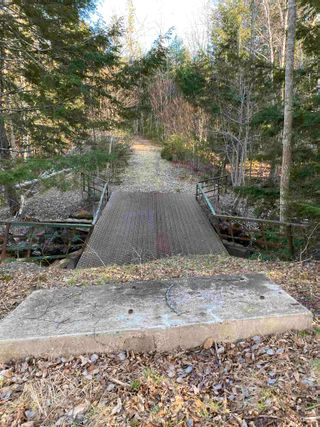 Photo 6: Saunders Road in Durham: 108-Rural Pictou County Vacant Land for sale (Northern Region)  : MLS®# 202108674