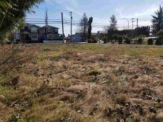 Photo 8: 12135 203 Street in Maple Ridge: Northwest Maple Ridge Land for sale : MLS®# R2350746