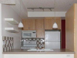 Photo 6: 308 1235 13 Avenue SW in CALGARY: Connaught Condo for sale (Calgary)  : MLS®# C3506823