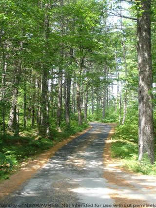 Photo 7: Lot 11 RAFUSE POINT Road in Pleasantville: 405-Lunenburg County Vacant Land for sale (South Shore)  : MLS®# 202100151