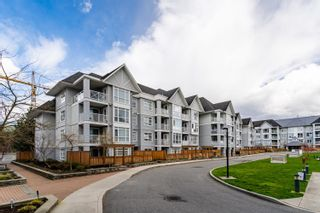 """Photo 38: 206 3142 ST JOHNS Street in Port Moody: Port Moody Centre Condo for sale in """"SONRISA"""" : MLS®# R2602260"""