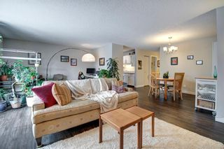 Photo 11: 414 1305 Glenmore Trail SW in Calgary: Kelvin Grove Apartment for sale : MLS®# A1067556