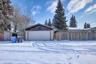 Photo 35: 67 Penmeadows Place SE in Calgary: Penbrooke Meadows Detached for sale : MLS®# A1066670