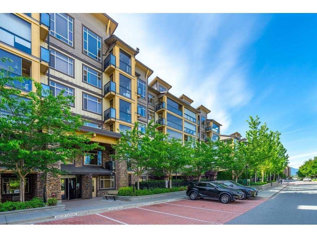 """Main Photo: 509 8067 207 Street in Langley: Willoughby Heights Condo for sale in """"Yorkson Parkside 1"""" : MLS®# R2580109"""