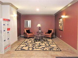 Photo 40: 410 1406 HODGSON Way in Edmonton: Zone 14 Condo for sale : MLS®# E4223592