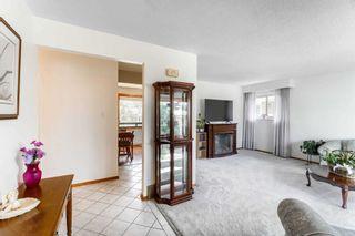 Photo 10: 60 Abbey Road in Brampton: Bram East House (Bungalow) for sale : MLS®# W5195753