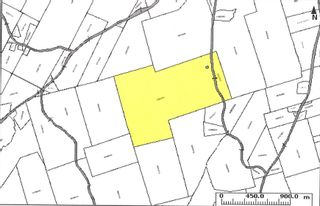 Photo 29: 299 New Lairg Road in New Lairg: 108-Rural Pictou County Vacant Land for sale (Northern Region)  : MLS®# 202117815