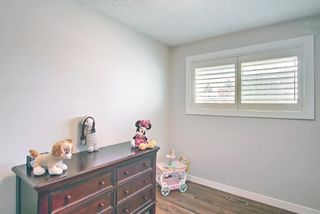 Photo 16: 5919 Pinepoint Drive NE in Calgary: Pineridge Detached for sale : MLS®# A1111211