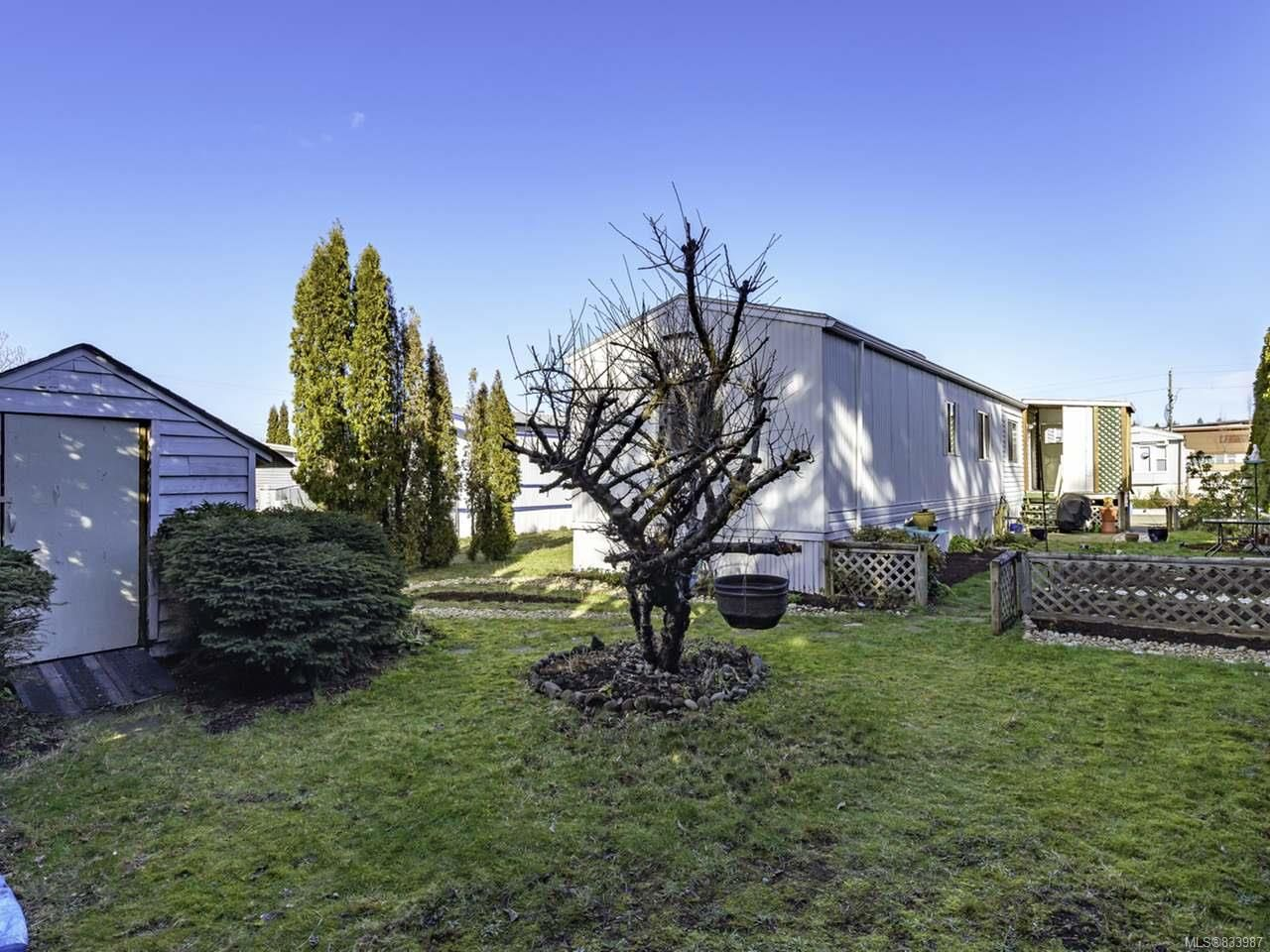 Photo 36: Photos: 64 390 Cowichan Ave in COURTENAY: CV Courtenay East Manufactured Home for sale (Comox Valley)  : MLS®# 833987
