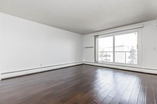 Photo 10: 401C 4455 Greenview Drive NE in Calgary: Greenview Apartment for sale : MLS®# A1052674