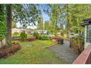 Photo 18: 24944 122 AVENUE in Maple Ridge: Websters Corners House for sale : MLS®# R2559311