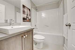Photo 31: 533 26 Avenue NW in Calgary: Mount Pleasant Detached for sale : MLS®# C4223584