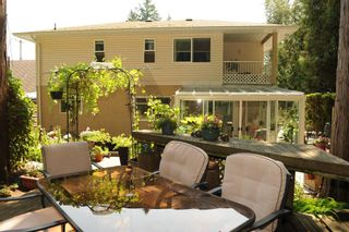 """Photo 36: 68 32377 7TH Avenue in Mission: Mission BC House for sale in """"CEDARBROOKE ESTATES"""" : MLS®# R2617542"""