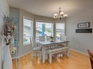 Photo 14: 180 SILVERADO Way SW in Calgary: Silverado Detached for sale : MLS®# A1016012