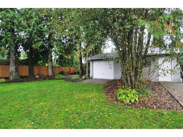 Photo 10: Photos: 24915 121ST Avenue in Maple Ridge: Websters Corners House for sale : MLS®# V914508