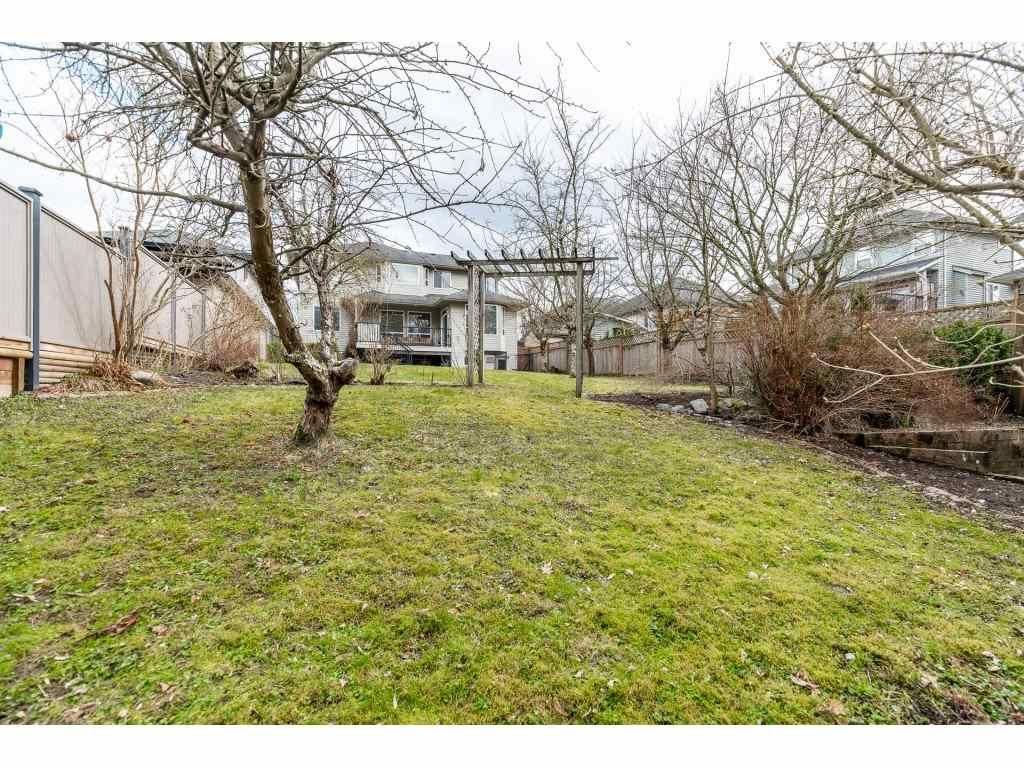 "Photo 40: Photos: 11617 CREEKSIDE Street in Maple Ridge: Cottonwood MR House for sale in ""Cottonwood"" : MLS®# R2554913"