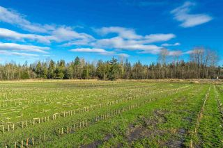 Photo 20: LT.2 232 STREET in Langley: Salmon River Land for sale : MLS®# R2532238