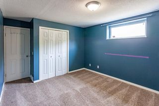 Photo 22: 53 Inverness Drive SE in Calgary: McKenzie Towne Detached for sale : MLS®# A1126962