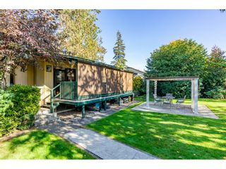 Photo 41: 32232 Pineview Avenue in Abbotsford: Abbotsford West House for sale
