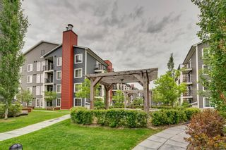 Photo 22: 2414 755 Copperpond Boulevard SE in Calgary: Copperfield Apartment for sale : MLS®# A1114686
