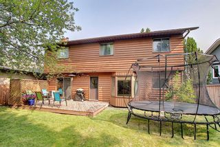 Photo 33: 172 Edendale Way NW in Calgary: Edgemont Detached for sale : MLS®# A1133694