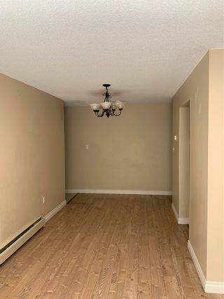 """Photo 3: 155 8151 RYAN Road in Richmond: South Arm Condo for sale in """"MAYFAIR COURT"""" : MLS®# R2601416"""