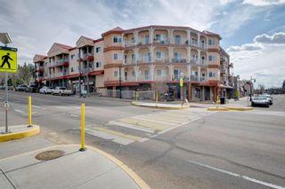 Photo 1: 303 50 St.Thomas Street: St. Albert Condo for sale : MLS®# E4242500