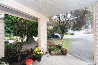 Photo 5: 4019 Malton Ave in VICTORIA: SE Mt Doug House for sale (Saanich East)  : MLS®# 770733