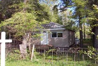 Photo 4: 77 Mcguires Beach Road in Kawartha L: House (Bungalow) for sale (X22: ARGYLE)  : MLS®# X1366054