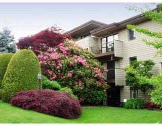 "Photo 29: 209 2125 W 2ND Avenue in Vancouver: Kitsilano Condo for sale in ""SUNNY LODGE"" (Vancouver West)  : MLS®# V840578"