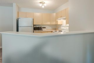 Photo 12: 3109 4975 130 Avenue SE in Calgary: McKenzie Towne Apartment for sale : MLS®# A1097325