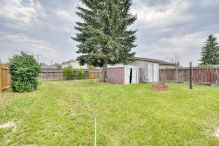 Photo 17: 72 Falsby Way NE in Calgary: Falconridge Detached for sale : MLS®# A1132081