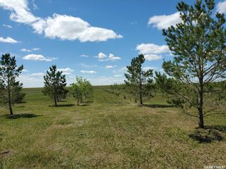 Photo 4: Horsnall Acreage in Moose Jaw: Lot/Land for sale (Moose Jaw Rm No. 161)  : MLS®# SK844416
