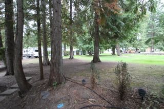 Photo 15: 111 3980 Squilax Anglemont Road in Scotch Creek: Recreational for sale : MLS®# TBD