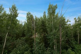 Photo 19: 306 290 Plamondon Drive: Fort McMurray Apartment for sale : MLS®# A1127119